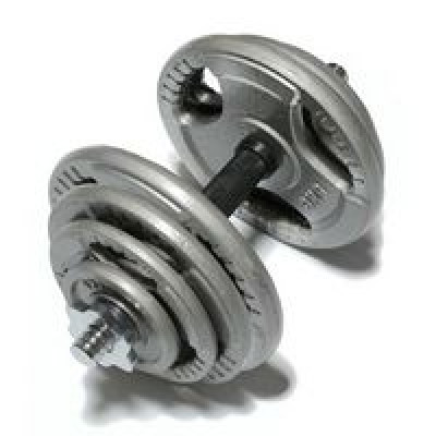 Гантель FitLogic 20,5 кг DB6010-20,5